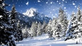 kış,kar,doğa,ağaç,güneş,orman