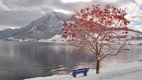 göl,kış,ağaç,dağ