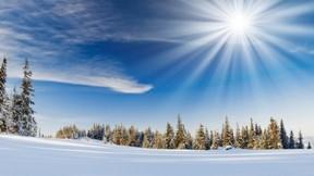 kış,güneş,kar,gökyüzü,ağaç