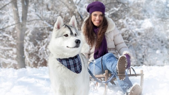 Kış Tatili Eğlencesi