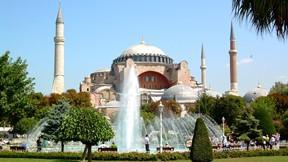 ayasofya,cami,istanbul,türkiye,ağaç