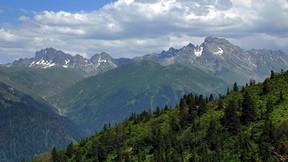 giresun,dağ,orman