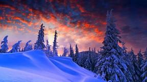 kış,kar,orman,günbatımı,dağ