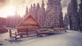 kış,dağ,kar,ev,orman