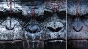 maymunlar cehennemi,şafak vakti,film