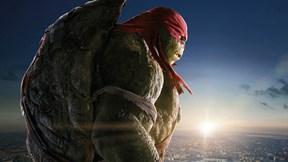 ninja kaplumbağalar,rafael
