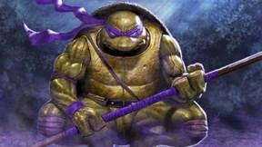 ninja kaplumbağalar,donatello