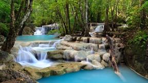 şelale,doğa,orman,tropikal