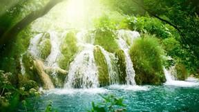 şelale,doğa,çimen,güneş,ağaç