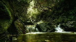 şelale,dere,doğa,orman