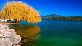 sonbahar,ağaç,göl,gökyüzü