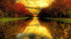 sonbahar,ağaç,yansıma,nehir