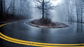 sonbahar,yol,orman,yağmur