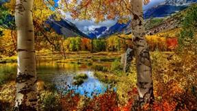 sonbahar,orman,dağ,göl