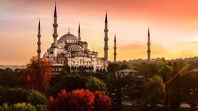 sultan ahmet cami,cami,istanbul,ağaç,günbatımı,sonbahar