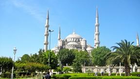 sultan ahmet cami,ağaç