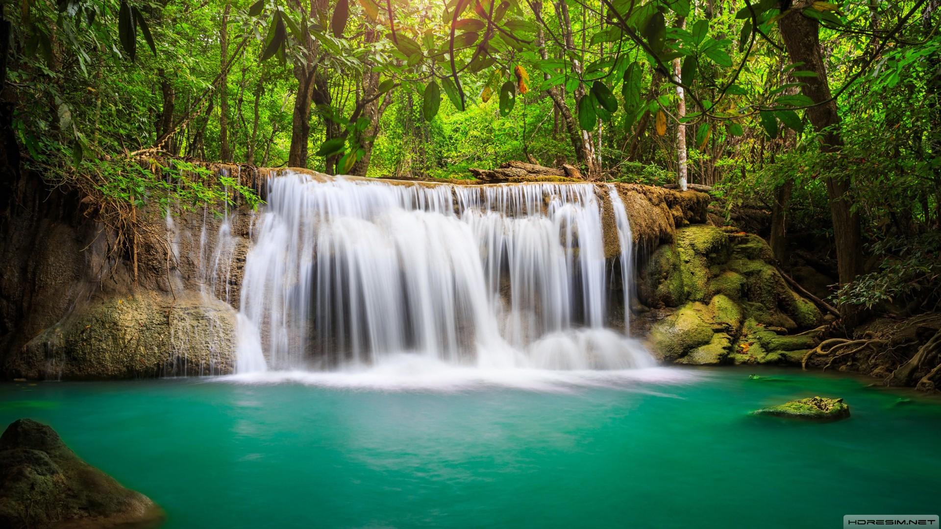 şelale,doğa,orman,göl,kayalık