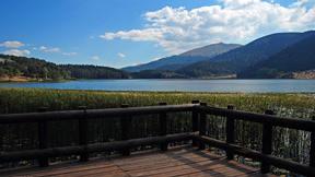 abant gölü,bolu,göl,orman