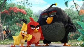 angry birds,sinema,2016,film