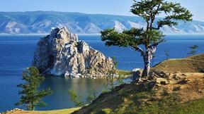 baykal gölü,rusya,ağaç,adacık