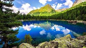 ilkbahar,ağaç,göl,dağ,orman
