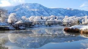 kış,kar,nehir,köprü,doğa,dağ,orman