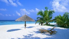 doğa,kumsal,ağaç,deniz,güneş,gökyüzü