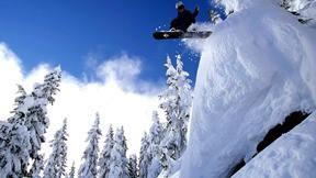 snowboard,kar,dağ,ağaç