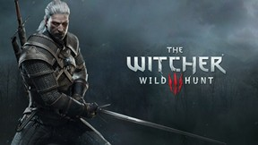 the witcher,wild hunt,tps