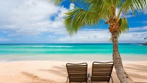 kumsal,yaz,deniz,ağaç,gökyüzü