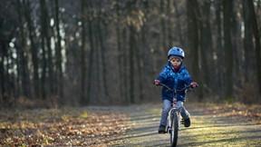 bisiklet,spor,orman