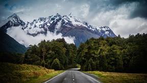 doğa,dağ,orman,ağaç,yol