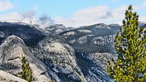 doğa,dağ,kar,ağaç