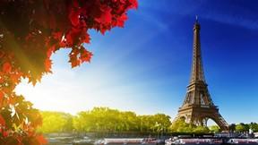 eyfel kulesi,paris,fransa,güneş,yaprak