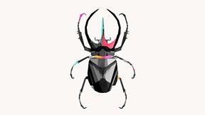 soyut,geometrik,böcek
