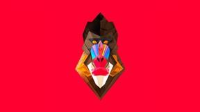 soyut,geometrik,maymun
