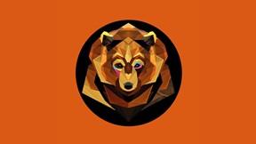 soyut,geometrik,ayı