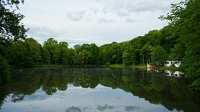 doğa,göl,ev,orman,ağaç