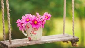 ilkbahar,çiçek,salıncak,pembe