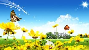 soyut,illüstrasyon,çiçek,kelebek,doğa
