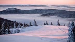 kış,dağ,kar,bulut,orman
