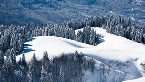 kı,kar,dağ,orman,ağaç