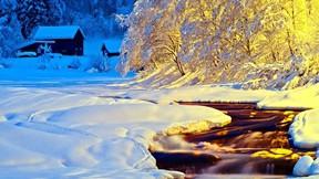 kış,kar,dere,gece,ağaç
