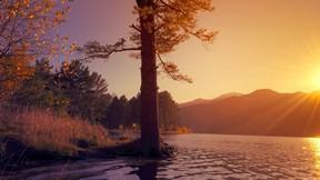 sonbahar,günbatımı,göl,ağaç