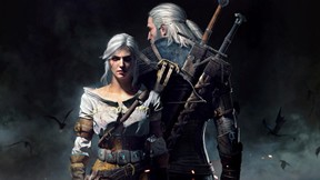 the witcher,wild hunt,tps,oyun