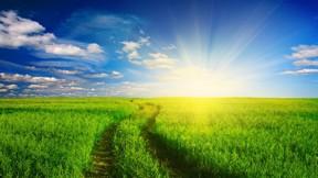 yaz,güneş,doğa