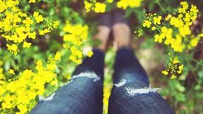 yaz,çiçek