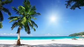 yaz,tropikal,güneş,kumsal,deniz,gökyüzü