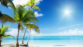 yaz,tropikal,deniz,güneş,kumsal