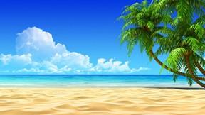 yaz,tropikal,manzara,kumsal,deniz